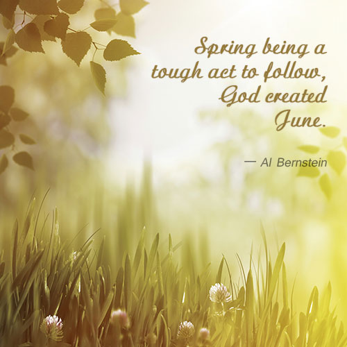 al-bernstein-quote-about-june-month
